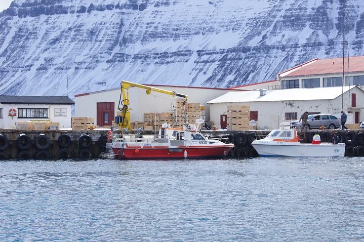 Bootsführerschein See- Für diese Angelboote nötig